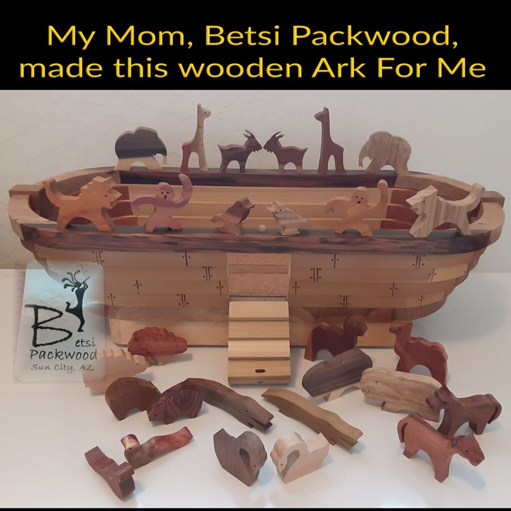 Wooden Ark by Betsi Packwood with the top level roof removed. LOVE the Pairs of Animals!